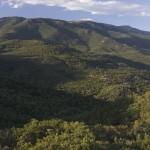Sierra-de-la-Albera-Nano-Canas